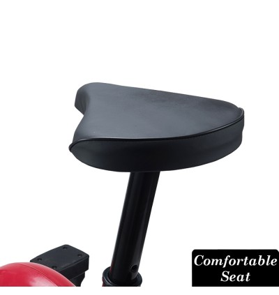 GC Home and Office Indoor Exercise Cycling Bike